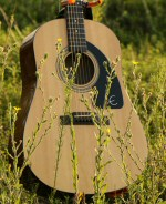 Guitar, resting in a field.